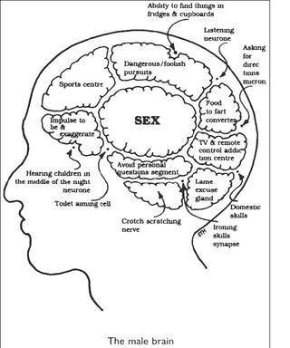 Why do we masturbate